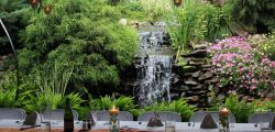 View the Waterfall and Pond Photo Gallery